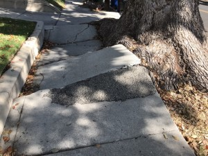 A sidewalk made impassible by tree roots and crumbling pavement.